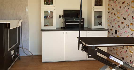 cage free dog grooming hereford